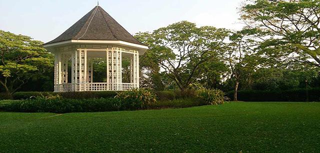 Singapore-Botanic-Gardens