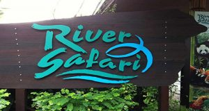 river-safari-singapore