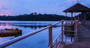 MacRitchie-Reservoir-Park