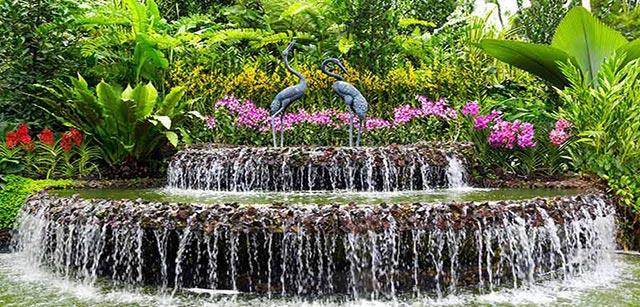 botanic-gardens-singapore