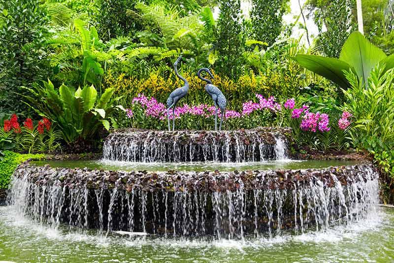 Botanic Gardens Singapore Image