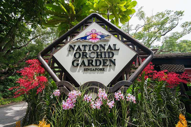 National Orchid Garden Image