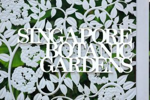 Singapore Botanic Garden Image