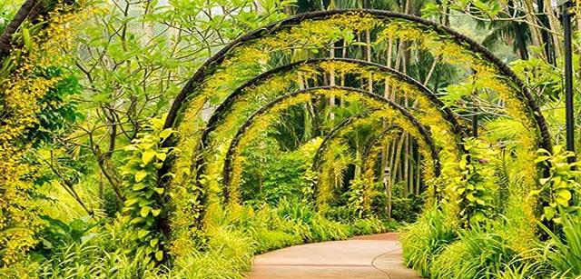 walking-trail-botanic-gardens