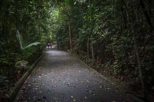 Landmark Singapore Image
