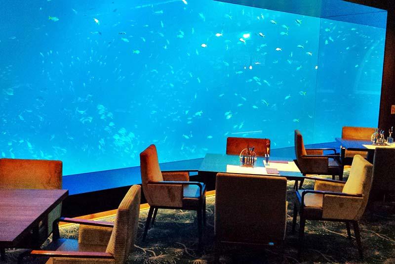 Ocean Restaurant Cat Cora Image