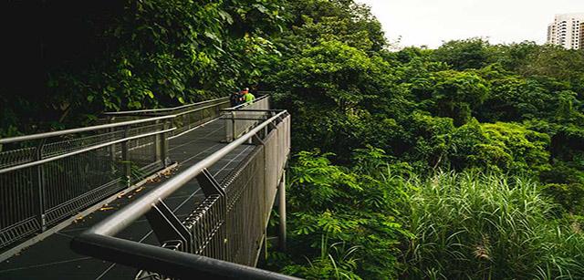 southern-ridges-singapore-image