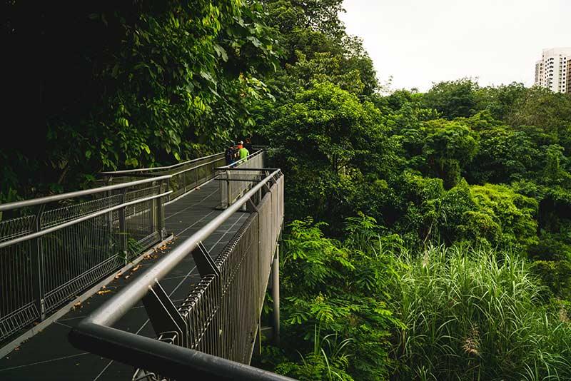 Southern Ridges Singapore Image