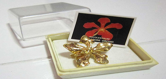 gold-plated-orchids-gift