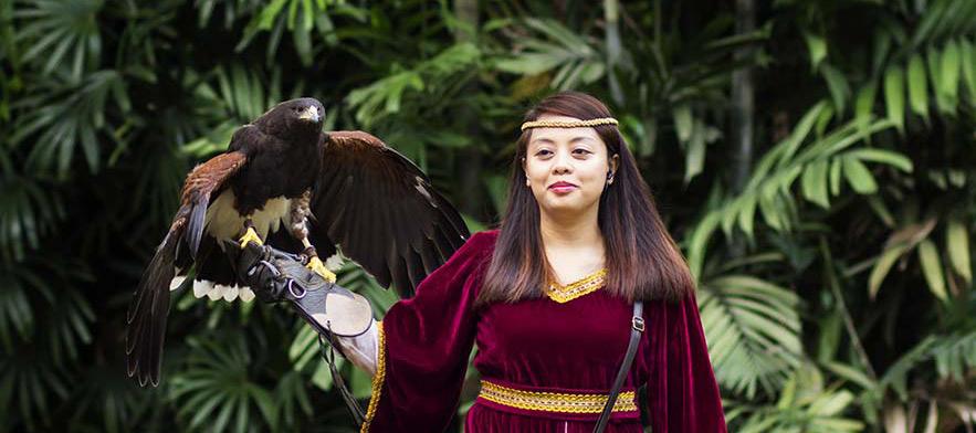 jurong-bird-park-entertainment